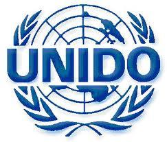 UNIDO - web