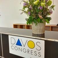 davos_blumen