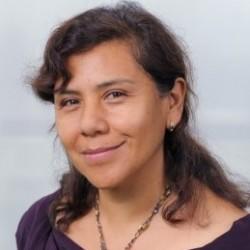 Dr. Sonia Valdivia – Chair