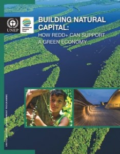 2014building-natural-capital-IRPfull
