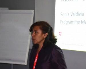 Sonia Valdivia (WRF)