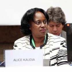 Alice Kaudia