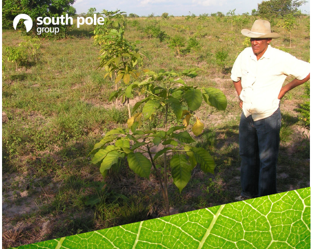 Latin American WRF 2016 Will be Carbon Neutral