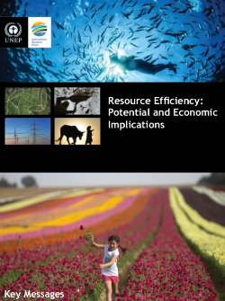 Resource Efficiency: Potential and Economic Implications